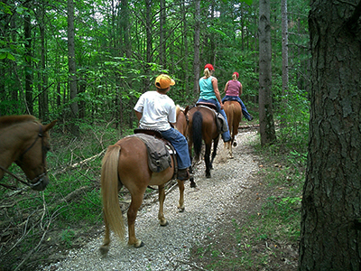 Guide to Cass County MI Parks