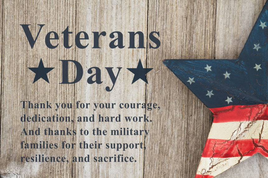 Cass County Michigan honors Veterans Day and all who served.